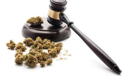 Cannabis Regulation Updates in California