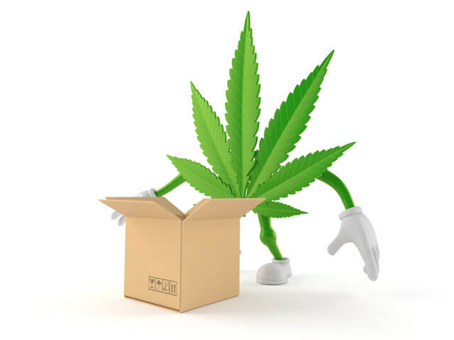 Benefits of Cannabis Delivery Services - Cannabis Dispensary