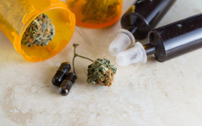 Everything You Need to Know About Cannabis, The Immune System, and COVID-19
