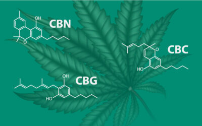 The Other Cannabinoids: CBG, CBC, and CBN