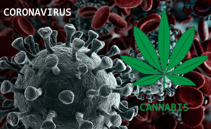 How to Buy Cannabis in the Age of Coronavirus